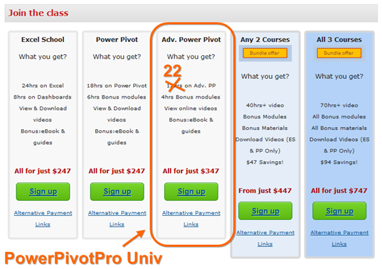 PowerPivotPro University, aka Advanced Power Pivot on Chandoo's site.