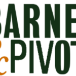For Real This Time:  Show Barnes & Noble that Power Pivot and Power BI are Important!